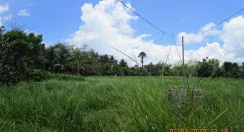 Alaminos City: Sadsaran St., Poblacion