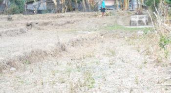 Dacap Sur Bani, Pangasinan